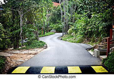 Road in green malaysia rain forest.