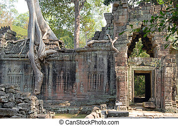 Preah Khan - Trees and ruin. Angkor, Cambodia