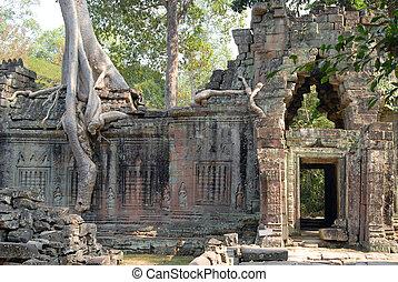 Preah Khan - Trees and ruin. Angkor, Cambodia