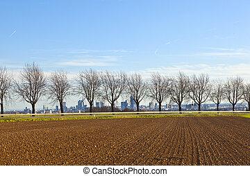 campos,  Skyline,  frankfurt, fundo, ruela