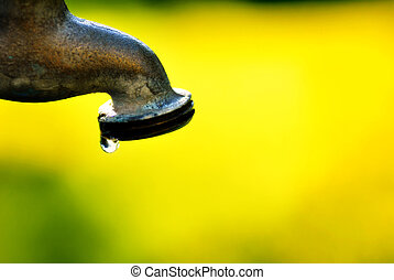 Water Faucet Drip - Water faucet dripping water with green...