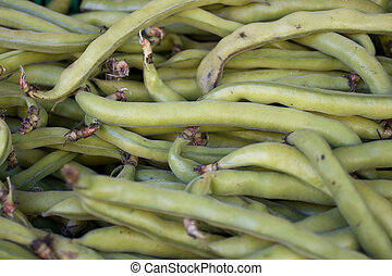 String Beans - Photo of biological String Beans
