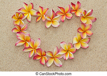 Frangipani flowers in heart shape - Group of frangipani,...