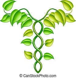 Natural or alternative medicine concept of two vines...