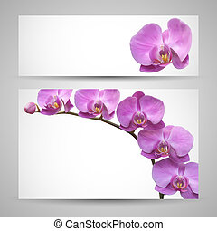 Orchid flower templates - Flower banner vector backgrounds...