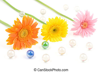 Gerbera daisy flower arrangements with glass bead