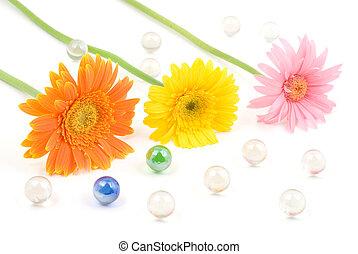 Gerbera daisy flower arrangements with glass bead