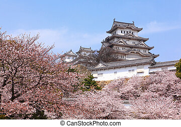 Japanese castle and Beautiful pink cherry blossom shot in...