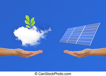 Solar Panel with hand, green plant, sky background