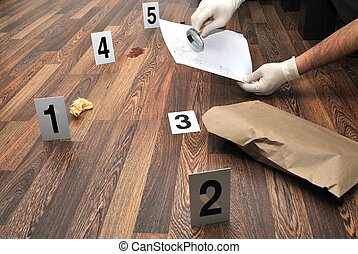 Crime scene- revealing and preserving criminological tracks