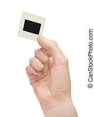 Hand holding slide - hand holding slide on white background