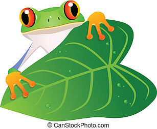 Frog with leaf - Vector illustration of frog with leaf