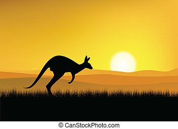 Kangaroo silhouette with sunset background