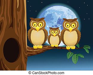 Owl family cartoon - Vector illustration of owl cartoon with...