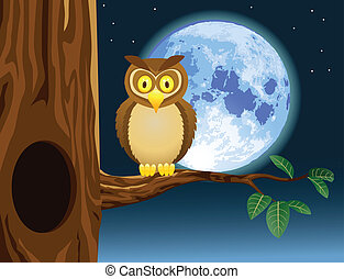Owl cartoon - Vector illustration of owl cartoon with full...