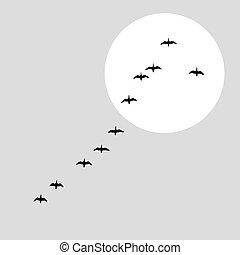 flying ducks silhouette on solar background, vector illustration