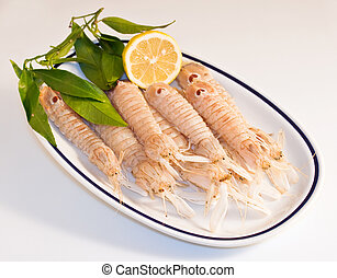 Squilla mantis, crustacean on a dish
