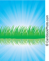 Lush grass.