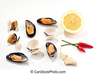 Mussels and clams on white background