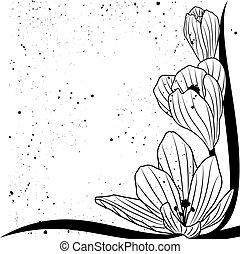 crocus - vector background with flowers of crocus for corner...