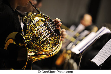 french horn during a classical concert music