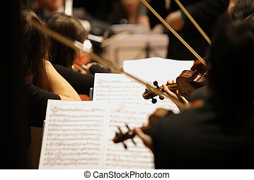 Violinist - violinists during a classical concert music