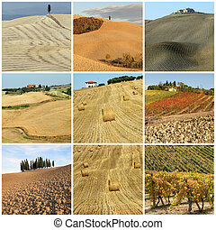 collage with scenic tuscan country landscape