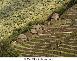 Huts and terraces in Machu Picchu