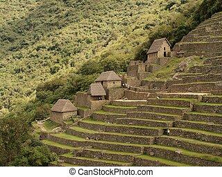 Huts and terraces in Machu Picchu