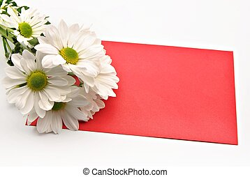Red card with a daisy