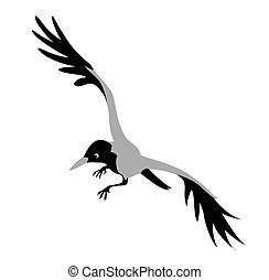 crow drawing on white background