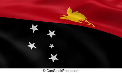 Papua New Guinea flag in the wind. Part of a series.