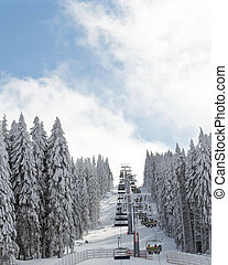 winter ski landscape with pine trees covered with snow and...