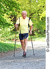 senior training for fitness walking nordic