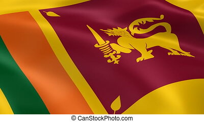 Sri Lankan flag in the wind