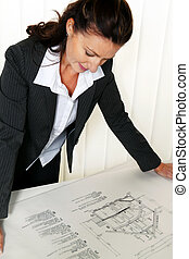 architect with a plan in the office.