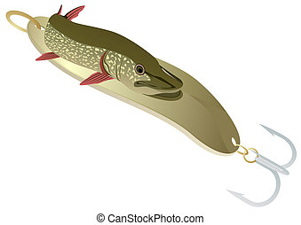 Minnow and pike - River minnow and predator. Pike is on...