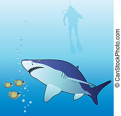vector shark, fishes and scubadiver