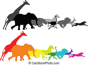 Animal racing - Vector illustration of wild animal running