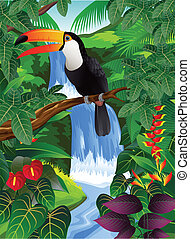 Toucan bird - Vector illustration of toucan bird in the...