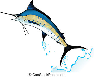 Marlin fish - Vector illustration of blue marlin fish...