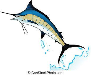 Marlin fish - Vector illustration of blue marlin fish...