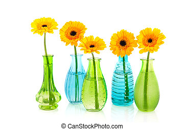 Yellow Gerber flowers in little glass vases - Yellow Gerber...