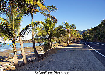 Cairns-Port Douglas Coast, Australia - Cairns to Port...