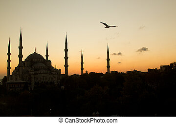 The Beautiful Blue Mosque in Istanbul in sunset scene with a bird in top left corner