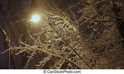 Snowfall - Snow falls in the streetlight