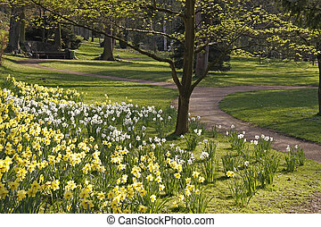 Foothpath in spring, Germany - Footpath in the casino park...