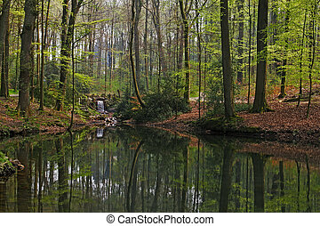 Pond in Lower Saxony, Germany - Pond landscape with...