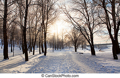 Solar winter landscape