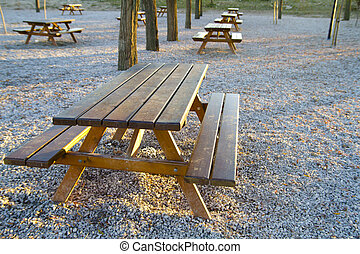 park bench at sunset in a forest